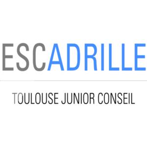 Escadrille junior conseil f d ration des associations - Cabinet de conseil toulouse ...